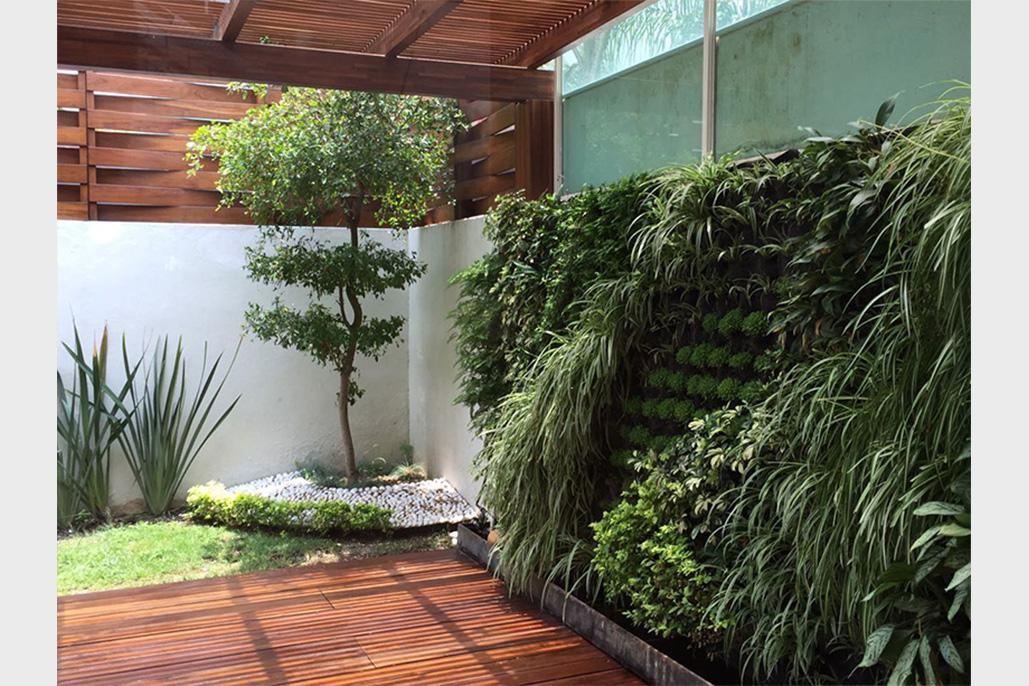 Muros verdes dad studio for Diseno de muros verdes