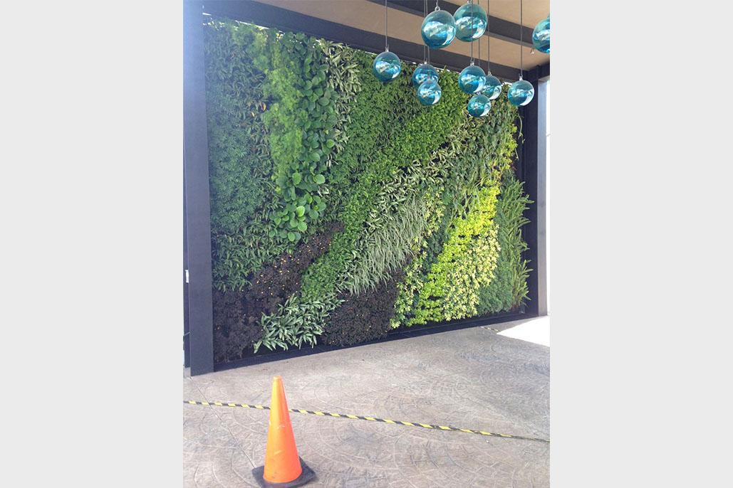 Muros verdes dad studio - Muros verdes verticales ...